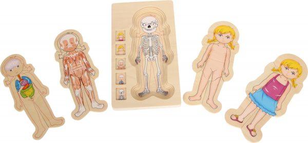 puzzle anatomía niña