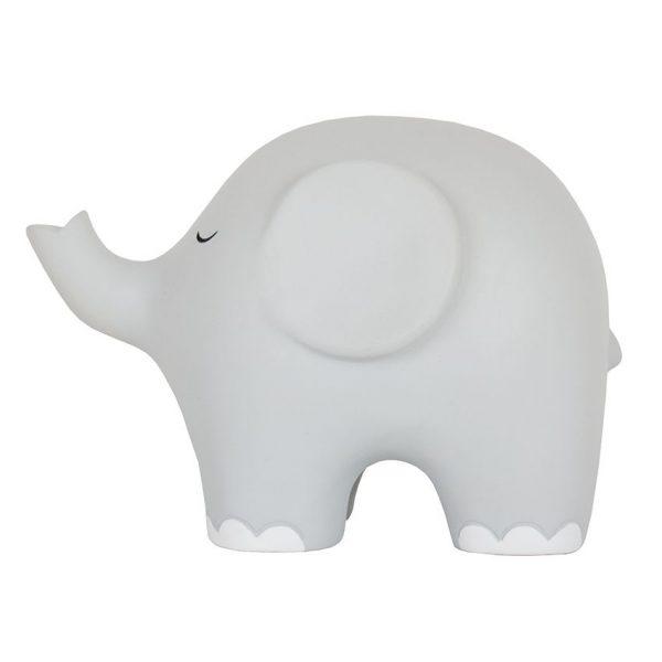 luz noche elefante gris